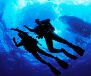 Divers Ascending Photo