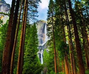 Yosemite National Park is One of the Most Famous Parks in the U.S.