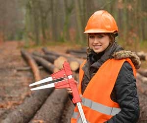 Working Conditions in the Forestry Service Generally Require Employees to Work in all Weather Conditions
